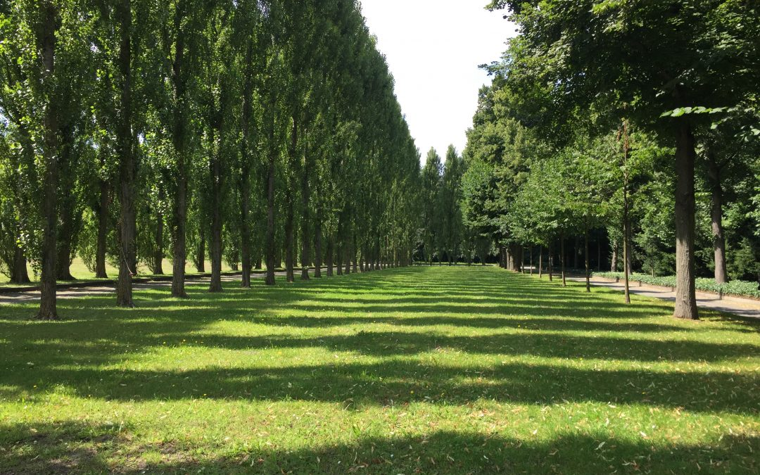 BEST PARKS FOR A DATE IN BERLIN