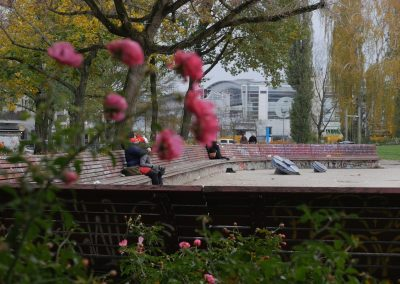 Benches of Annemirl Bauer Platz