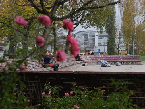 ANNEMIRL BAUER PLATZ | benches