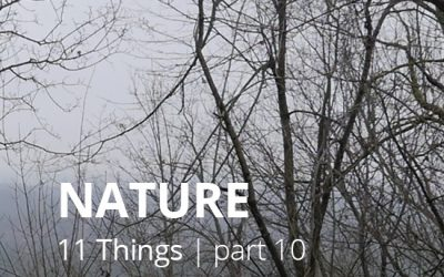 #10 NATURE