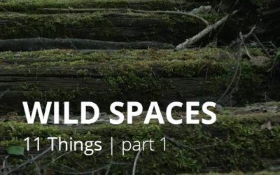 #1 WILD SPACES