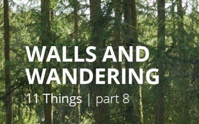 #8 WALLS & WANDERINGS