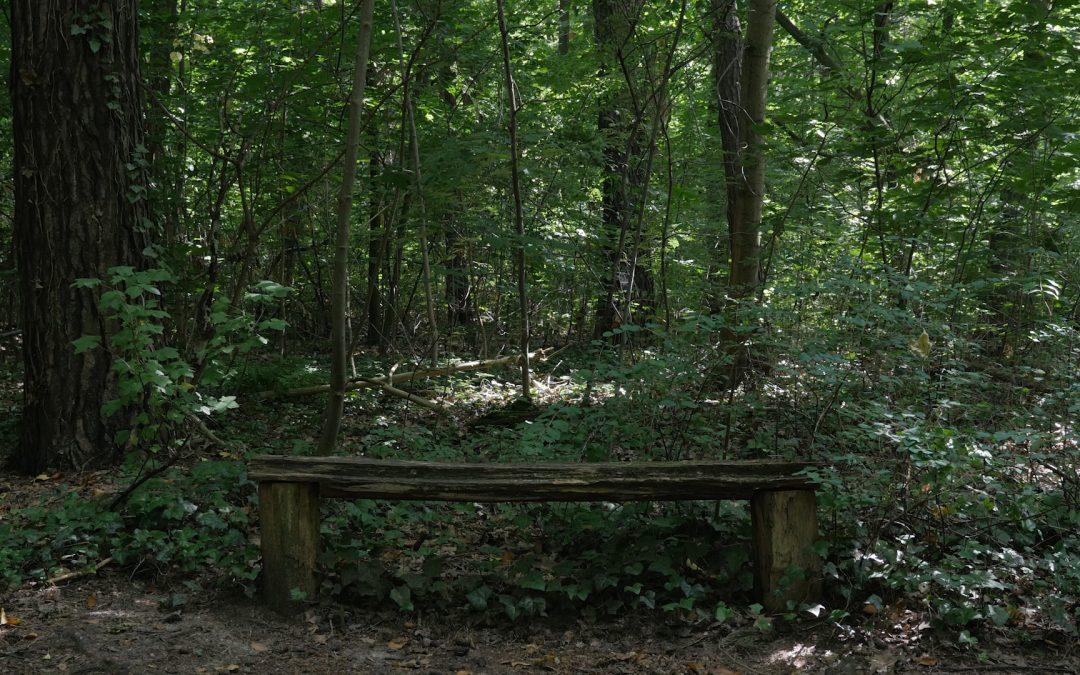 BENCHES | take a seat