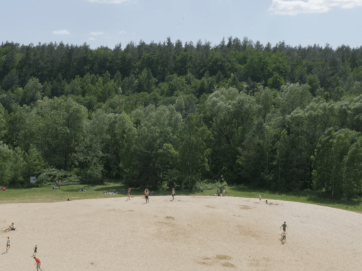 GRUNEWALD | forest dune